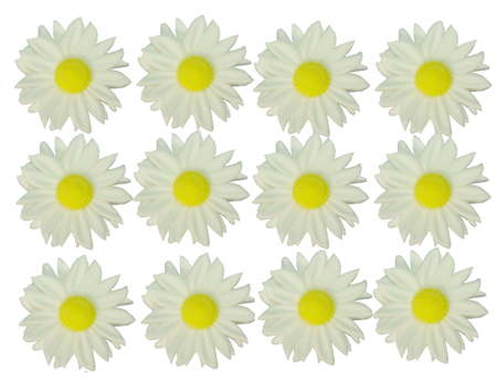 Gumpaste Hand Made Daisies   12 Per Package