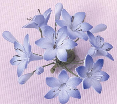 Gumpaste Hand Made Agapanthus Blue Single   6 Per Package