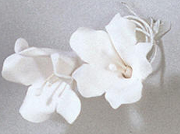 Gumpaste Hand Made Individual Bell Flowers   12 Per Package