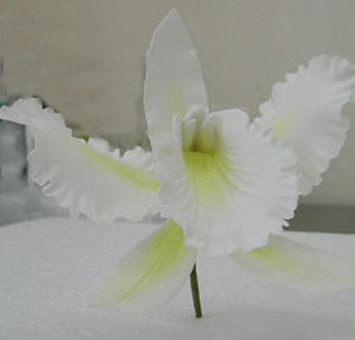 Gumpaste Hand Made Cattleya Orchid    2 Per Package