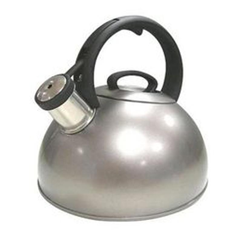 Stainless Steel Tea Kettle ~ Copco sphere polished stainless steel tea kettle