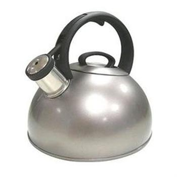 Copco Sphere Polished Stainless Steel Tea Kettle