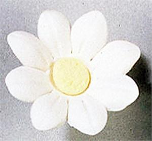 Gumpaste Hand Made Single Petal  Small Daisy   8 Per Package