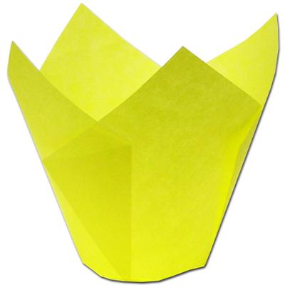 TBK Yellow Tulip Baking Cups