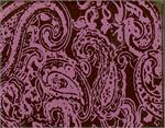 Pink Paisley Transfer Sheet